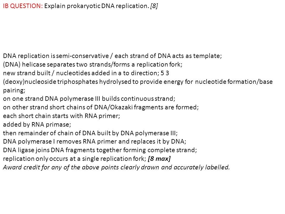 Topic 7 nucleic acids and proteins ppt video online download ib question explain prokaryotic dna replication 8 pronofoot35fo Choice Image